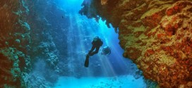 Diving in United Arab Emirates