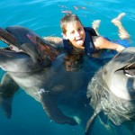 Swim With Dolphins _ Sakura Dubai World Group Travel